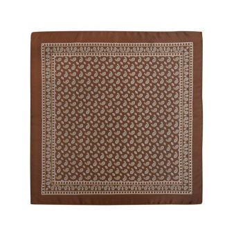 Pañuelo infantil marrón con cachemir